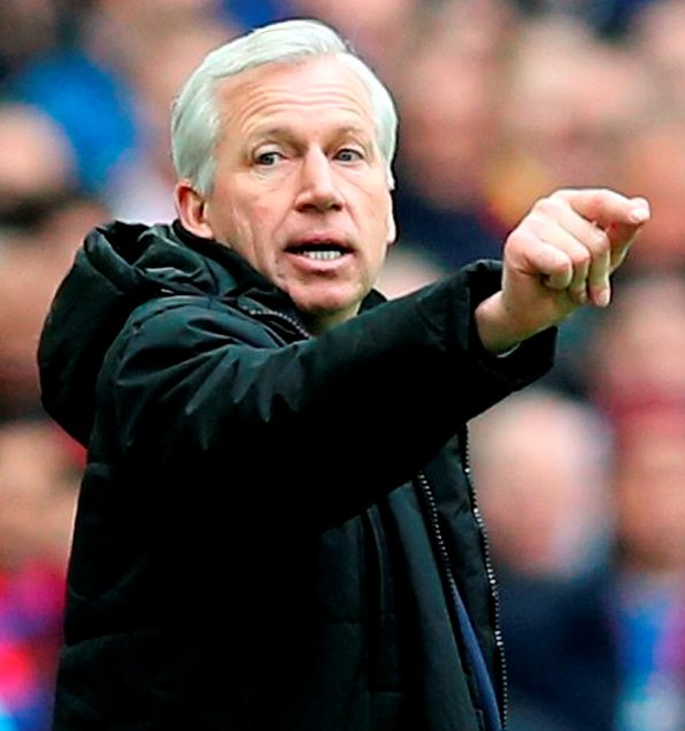Crystal Palace manager Alan Pardew Photo: Adam Davy/PA Wire
