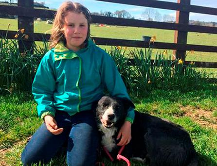 Annie May with her sheepdog Pero, who turned up at her doorstep two weeks after he went missing 240 miles away.