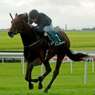 Air Force Blue, winning at the Curragh last year, can score for Ryan Moore in today's 2,000 Guineas (SPORTSFILE)