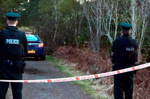 Police at the scene where a serious sexual assault was carried out at Peatlands Park, Dungannon, on Wednesday morning