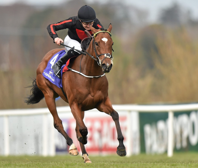 Jet Setting, with Shane Foley up, on their way to winning the Leopardstown 1,000 Guineas Trial Stakes at Leopardstown last month. Photo: Matt Browne / Sportsfile