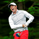Rory McIlroy reacts after an errant teeshot on the 12th hole at Quail Hollow Photo: AP