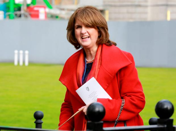 Labour leader Joan Burton (Frank McGrath)