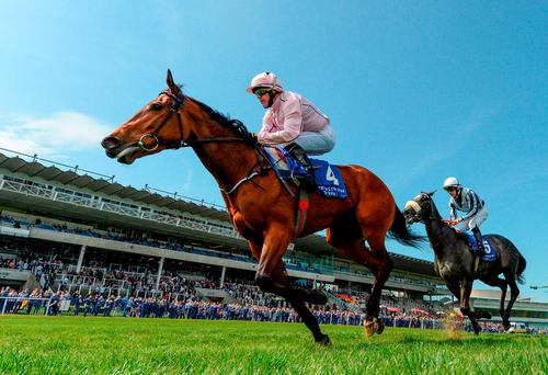 Now Or Never and Kieran Fallon winning the 1,000 Guineas Trial at Leopardstown. Photo: Matt Browne / Sportsfile