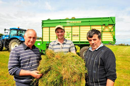 Tom Murphy, Jenkinstown Co Kilkenny (right) examines his first cut 20ac of silage cut last week by contractor Brian Murphy, with Martin Dempsey, left. Photo: Roger Jones.