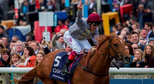 2000 Guineas victor, Galileo Gold: 'If he happens to go to Ireland and win impressively, who knows?' Photo: Julian Herbert/PA