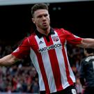 Brentford's Scott Hogan. Photo: Harry Murphy/Getty Images