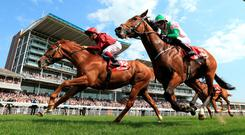 Wings of Desire, under Frankie Dettori, edges out Deauville (right) in the Dante. Photo: Mike Egerton/PA