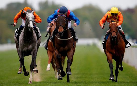 Clever Cookie and jockey PJ McDonald (C) powers past Curbyourenthusiasm (L) and Second Set (R) to claim the Yorkshire Cup yesterday. Photo: Alan Crowhurst/Getty Images