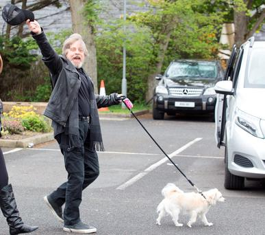 Veteran 'Star Wars' star Mark Hamill waves goodbye to Donegal as he leaves his secluded hotel with his pet dog Millie. Photo: North West Newspix