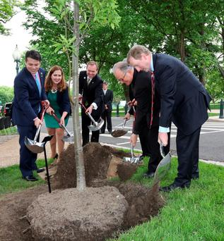 Taoiseach Enda Kenny planting a tree on Capitol Hill in Washington DC this week