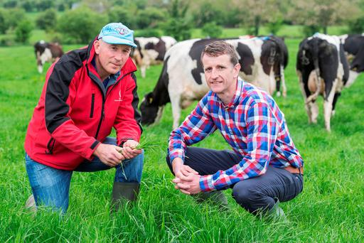 Sean Moher, Croughmore, Mitchelstown winner of the Dairygold Milk Quality Awards is pictured on his farm with Willie Ryan, Dairygold. Photo O'Gorman Photography.