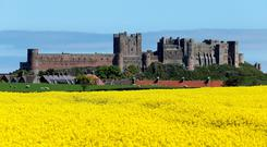 A rapeseed field in front of Bamburgh Castle in Northumberland. Photo: Owen Humphreys/PA Wire
