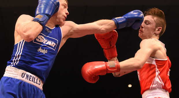 Dean Walsh and Ray Moylette battling it out at the 2015 National Elite Boxing Championship Finals. National Stadium, Dublin. Picture credit: Cody Glenn / SPORTSFILE