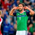 Northern Ireland's Will Grigg celebrates scoring his side's third goal during the International Friendly at Windsor Park