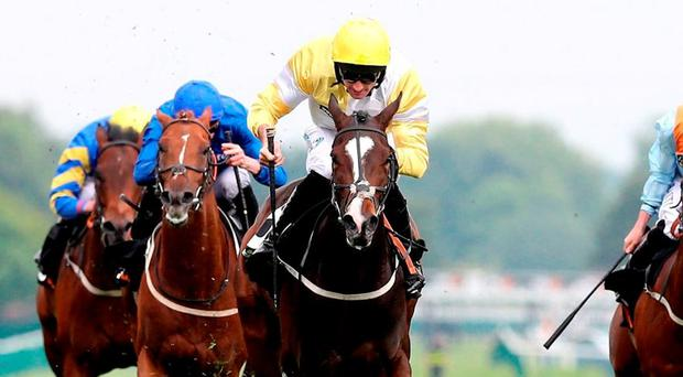 Quiet Reflection (centre) ridden by Dougie Costello wins The 188Bet Sandy Lane Stakes. Photo: Martin Rickett/PA Wire