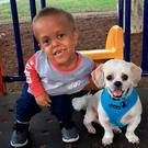 Quaden with his dog Buddy who also has dwarfism. PIC: Stand Tall 4 Dwarfism Facebook