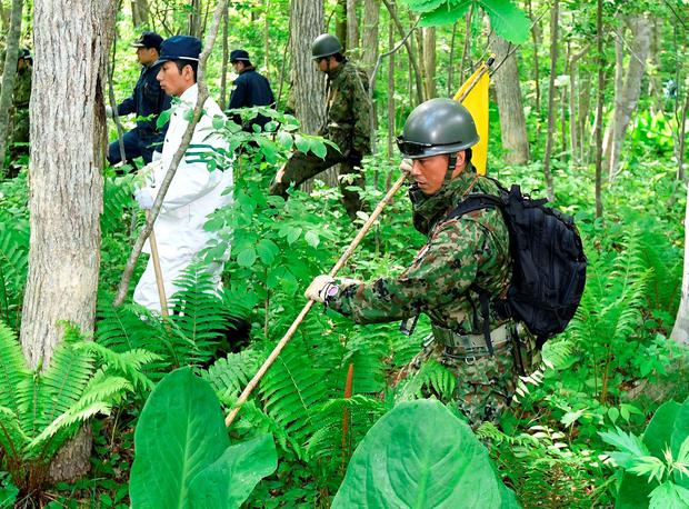 Japanese Self-Defense Force soldiers (R and 2nd R) and police officers search for a 7-year-old boy who went missing on May 28, 2016 after being left behind by his parents, in Nanae town on the northernmost Japanese main island of Hokkaido, Japan