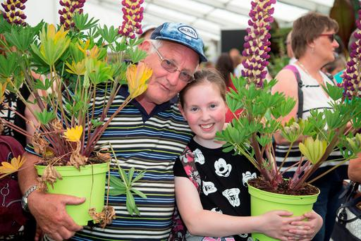 Emma Connolly (12), Palmerstown with her Grandfather Tom Geoghegan at Bloom in The Phoenix Park