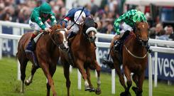 Jimmy Fortune riding Tullius win The Investec Diomed Stakes at Epsom yesterday. Photo credit: Alan Crowhurst/Getty Images