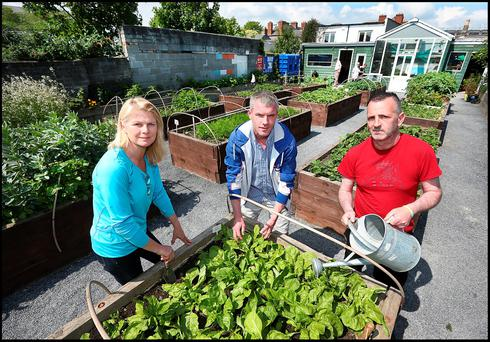 Training horticulturist Marie Staunton with Peter Comerford and Edward Cleary at the Pat Murphy Community Garden run by The Larkin Unemployed Centre on North Strand Road Photo: Steve Humphreys