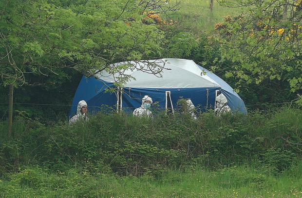 Garda forensic officers at the scene. Photo: INM