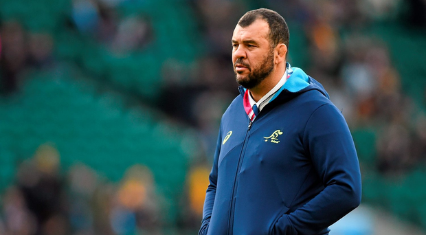 Michael Cheika: Refusing to be drawn into mind-games. Photo: Sportsfile