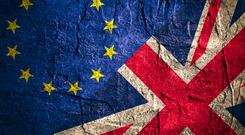 A last-minute rush by voters looking to vote in the EU referendum caused the registration website to crash