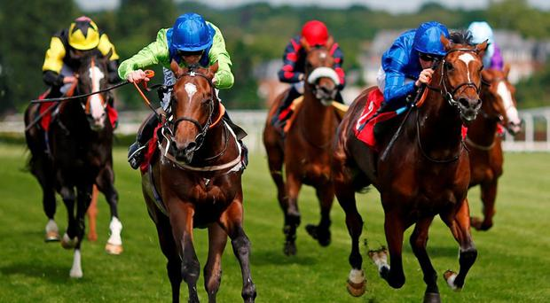Monticello (left), with Joe Fanning up, on the way to winning The Amazing Sri Lanka Maiden Stakes at Sandown. Photo: Alan Crowhurst/Getty Images