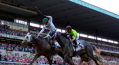 Creator (left), under jockey Irad Ortiz Jr, gets up close home to pip Destin (Javier Castellano) to claim the 148th running of the Belmont Stakes. Photo: USA Today Sports