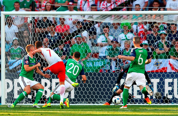 Arkadiusz Milik of Poland scores his team's first goal past Michael McGovern of Northern Ireland during the match between Poland and Northern Ireland. Photo: Lars Baron/Getty Images