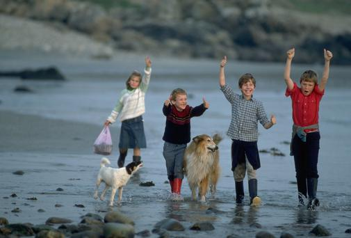 Four kids and their dogs, a collie and a mutt, run along a beach playing. Connemara region, Western Ireland. | Location: Connemara region, Ireland.