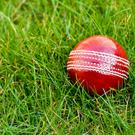It is now highly probable that the Boys in Green will play their first Test match in 2019, whether or not the ICC adopt a radical proposal to split the five-day game into two divisions Photo: Getty Images/iStockphoto