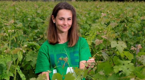 Irish supporter Pauline Maroszak at Chateau Lynch Bages in Bordeaux. Photo: Mark Condren