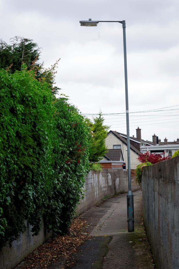 The lane where Philip's bag was found, in 1986 and today, close to the Ballyroan Road in Rathfarnham
