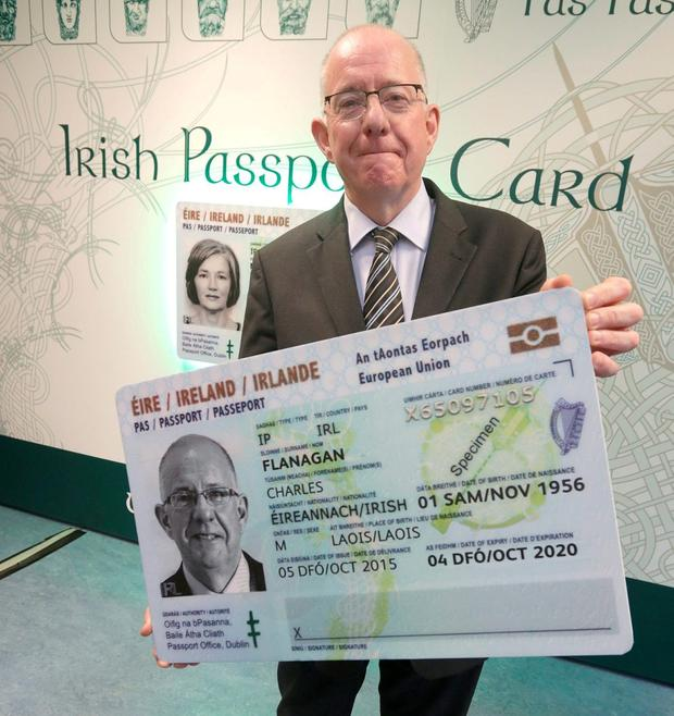 If British voters opt for Leave on Thursday, Foreign Affairs Minister Charlie Flanagan and his team of diplomats in Dublin, Brussels and across all the EU capitals would face the biggest challenge in the State's history. Picture credit; Damien Eagers