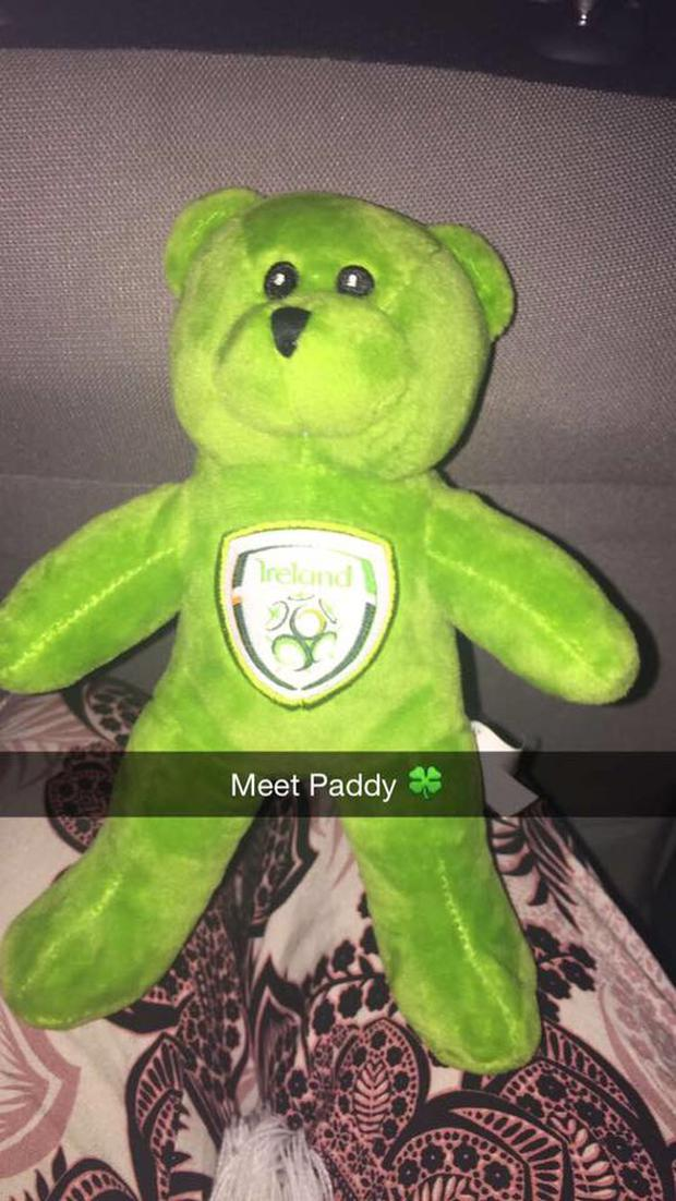 Meet Paddy the Bear