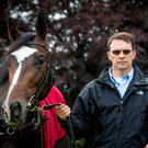 Scope results forced Aidan O'Brien to withdraw US Army Ranger from Derby