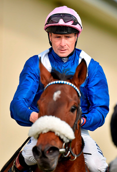 Smullen: Solid claims in the finale Picture: Cody Glenn / SPORTSFILE