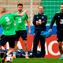 Ireland manager Martin O'Neill looks on during squad training in Versailles