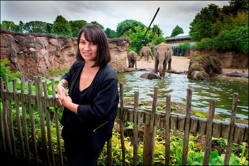 Emma Kiernan, marketing manager at Dublin Zoo. Photo: David Conachy