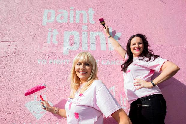 RTE's Miriam O'Callaghan campaigning for the society.