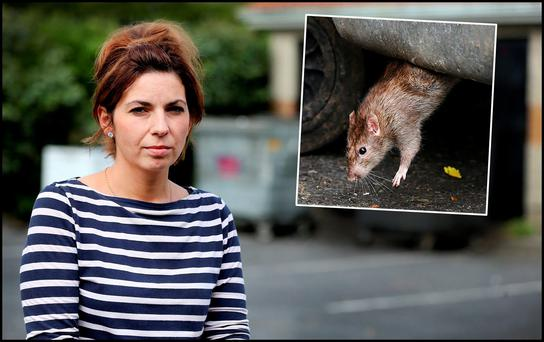Marta Boitor from Grange View Place in Clondalkin and inset a rat at the estate