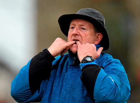 Limerick's All-Ireland winning captain and current Mary Immaculate College manager Eamonn Cregan believes the county must revert to a more traditional style Picture: Diarmuid Greene / SPORTSFILE