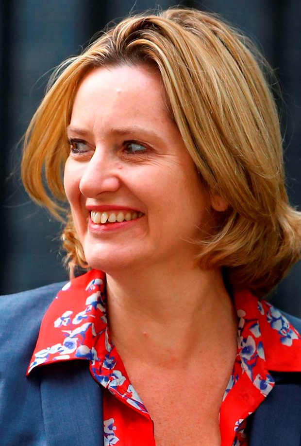 Amber Rudd Photo: Gareth Fuller/PA Wire