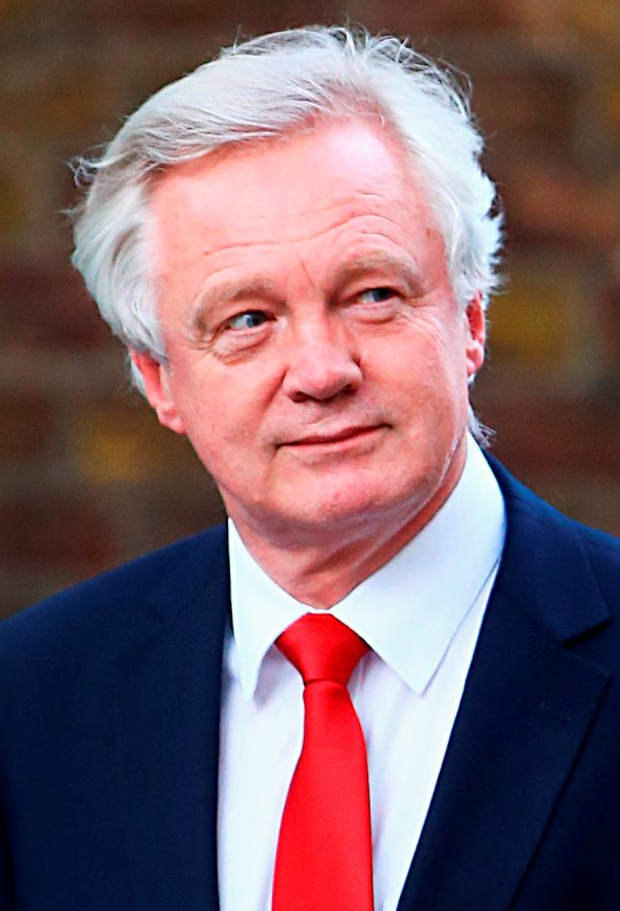 David Davis. Photo: Gareth Fuller/PA Wire
