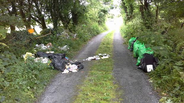 Mayo County Council is investigating a case of illegal dumping. Photo: Joe Freeley/Facebook