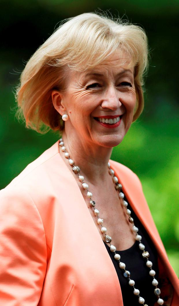 Confidence: Andrea Leadsom. Photo: Reuters/Paul Hackett