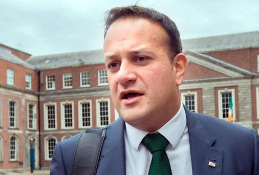 PEACEMAKER: Leo Varadkar. Photo: Tony Gavin