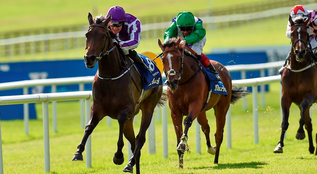 Seventh Heaven, with Seamie Heffernan up, on the way to winning the Irish Oaks. Photo: Paul Mohan/Sportsfile